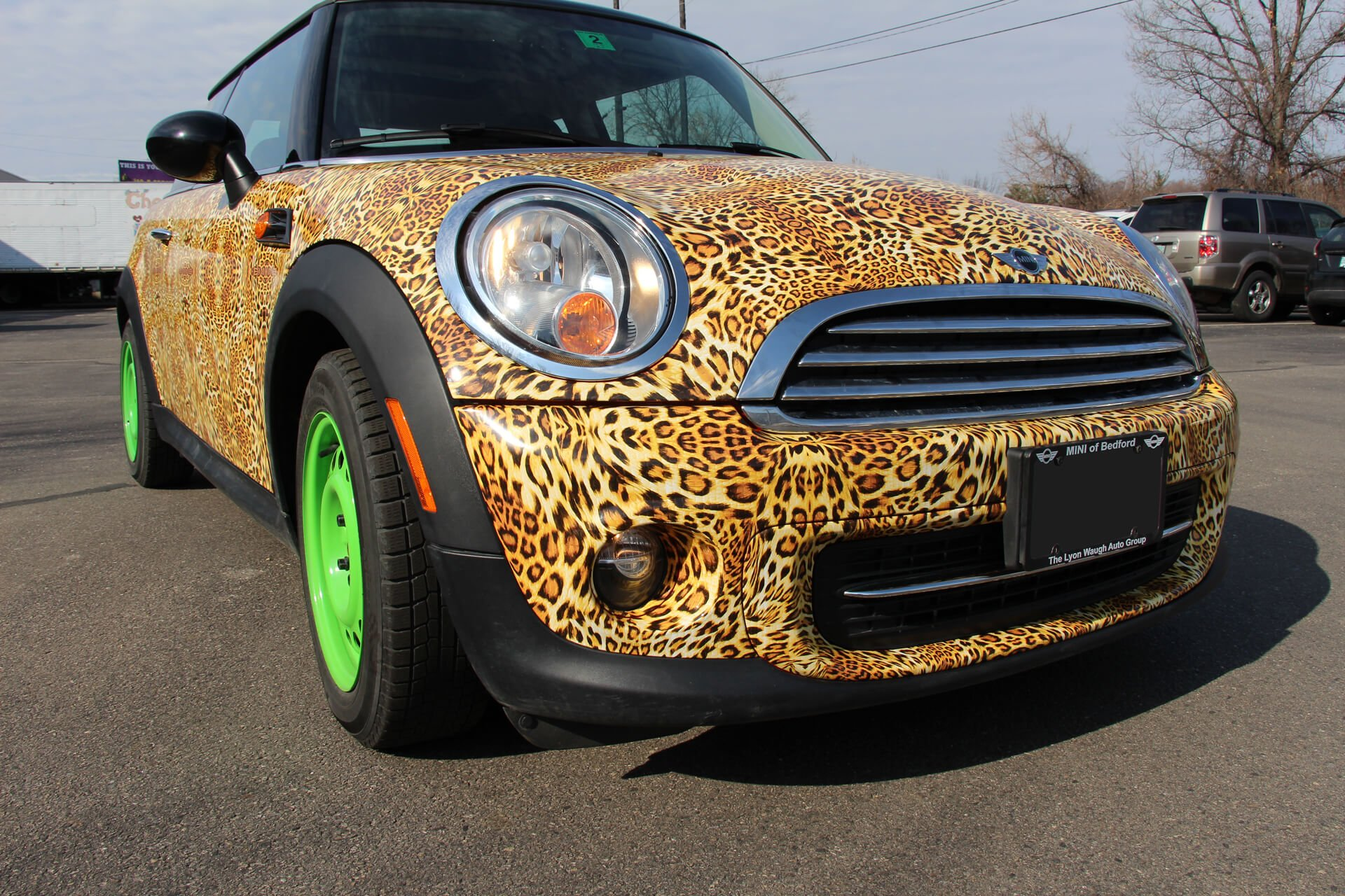 left front mini cooper leopard after