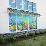 Aquarium Window Graphics
