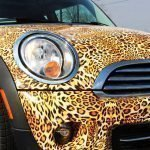 mini cooper vehicle wrap leopard print